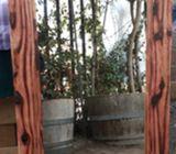Espejo Rustico en pino oregon