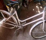 Bicicleta Antigua Paseo