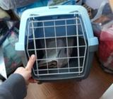 Jaula de transporte gato