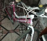 Bicicletas con mantencion