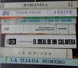 Lote de libros clásicos escolares