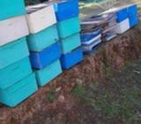 Cajones de abejas sin abejas