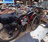 Bicicleta motor mosquito